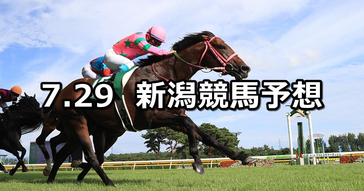【アイビスサマーダッシュ】7/29(日) 新潟競馬 穴馬予想