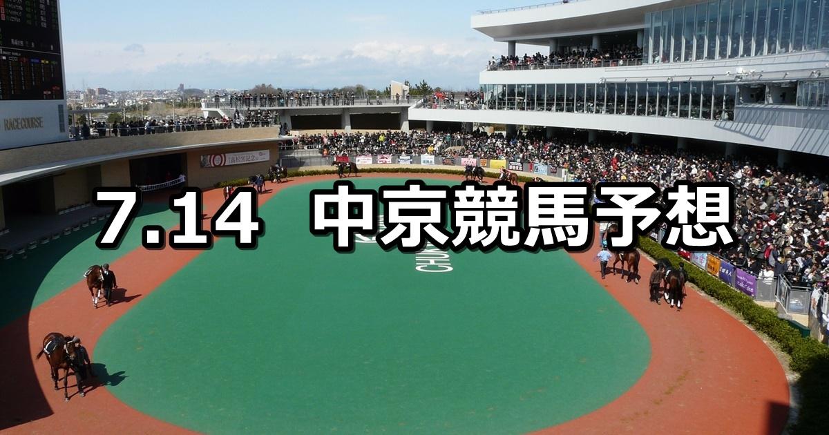 【マレーシアカップ】7/14(土) 中京競馬 穴馬予想