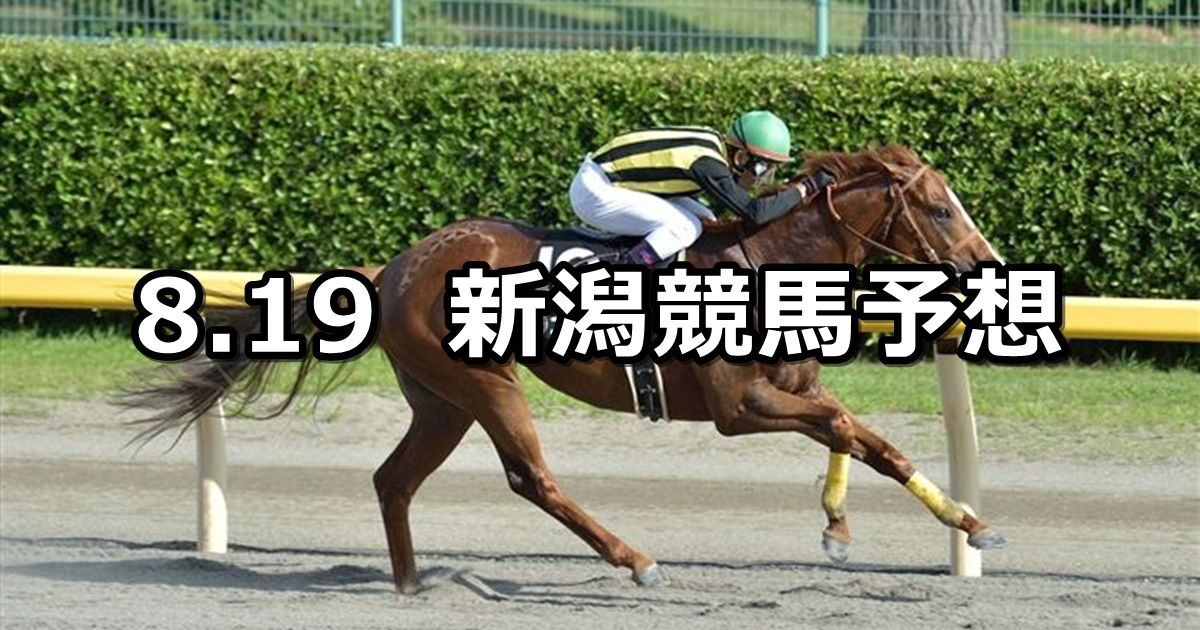 【NST賞】8/19(日) 新潟競馬 穴馬予想