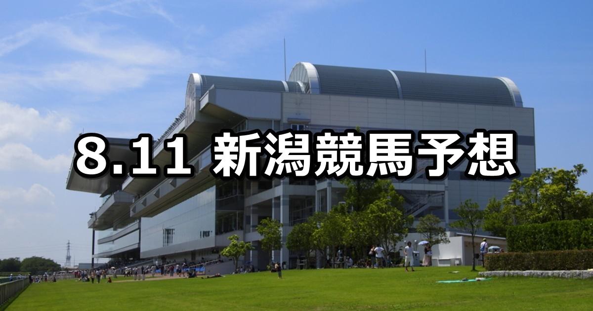 【新潟日報賞】8/11(土) 新潟競馬 穴馬予想