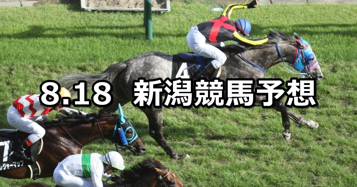 【日本海ステークス】8/18(土) 新潟競馬 穴馬予想