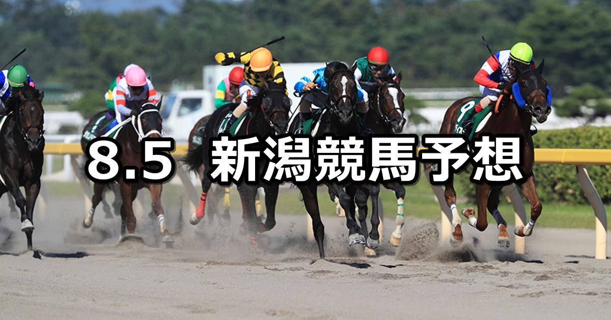 【レパードステークス】8/5(日) 新潟競馬 穴馬予想