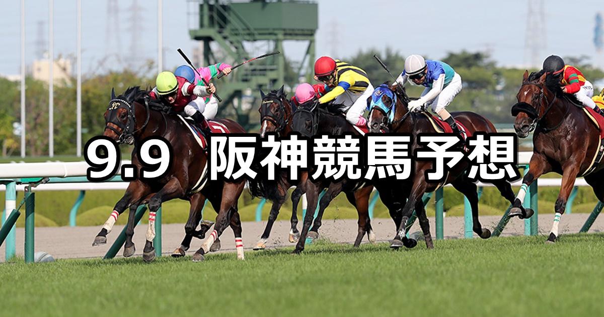 【セントウルステークス】9/9(日) 阪神競馬 穴馬予想