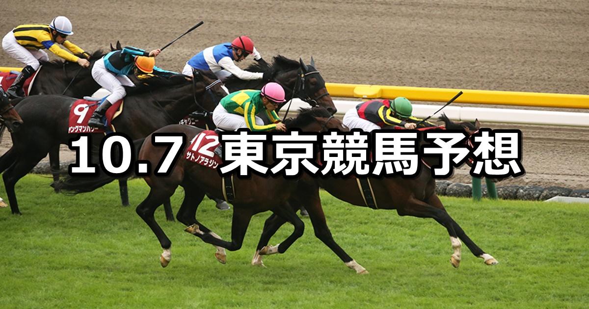 【毎日王冠】10/7(日) 東京競馬 穴馬予想
