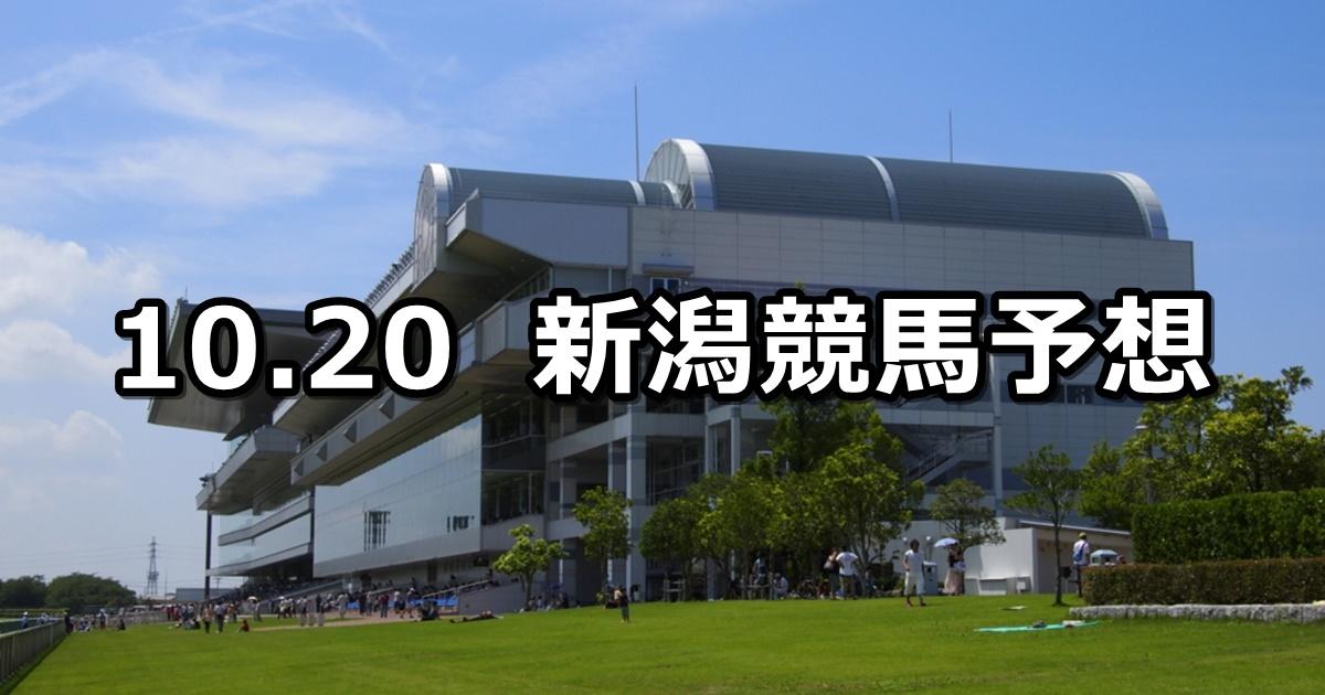 【飛翼特別】10/20(土) 新潟競馬 穴馬予想