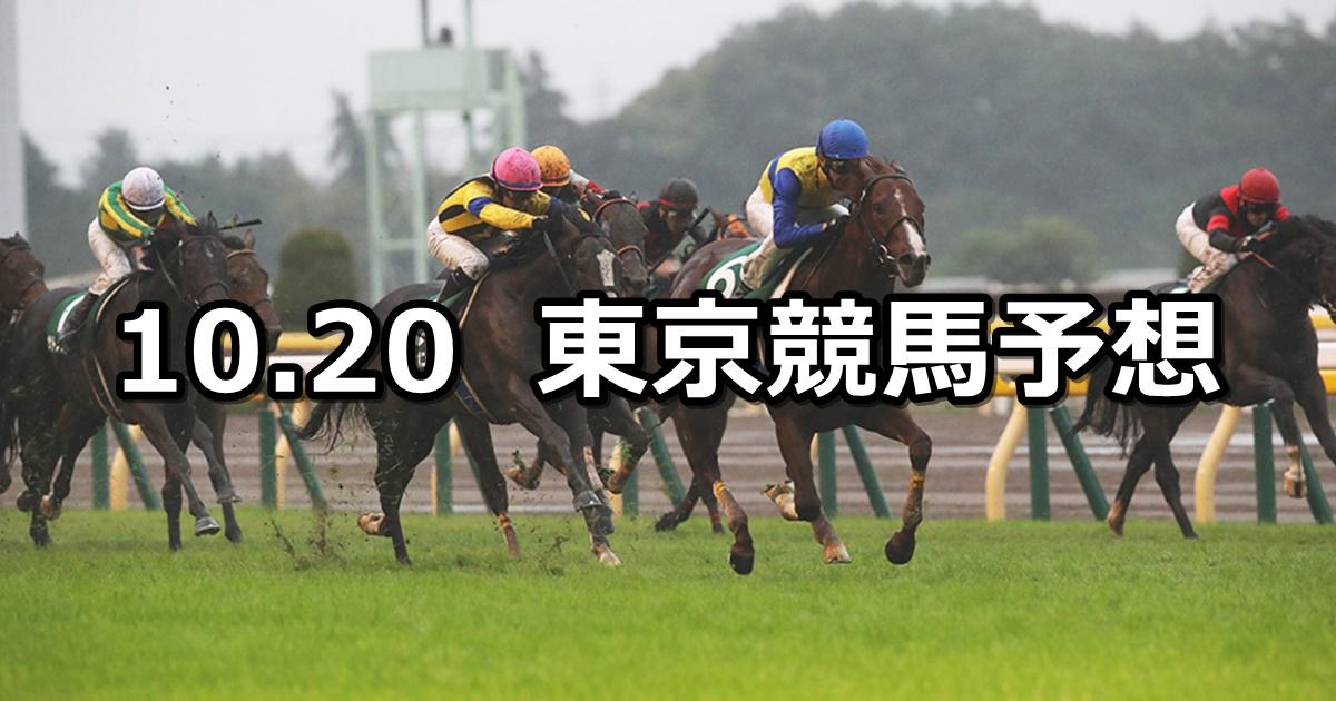 【富士ステークス】10/20(土) 東京競馬 穴馬予想