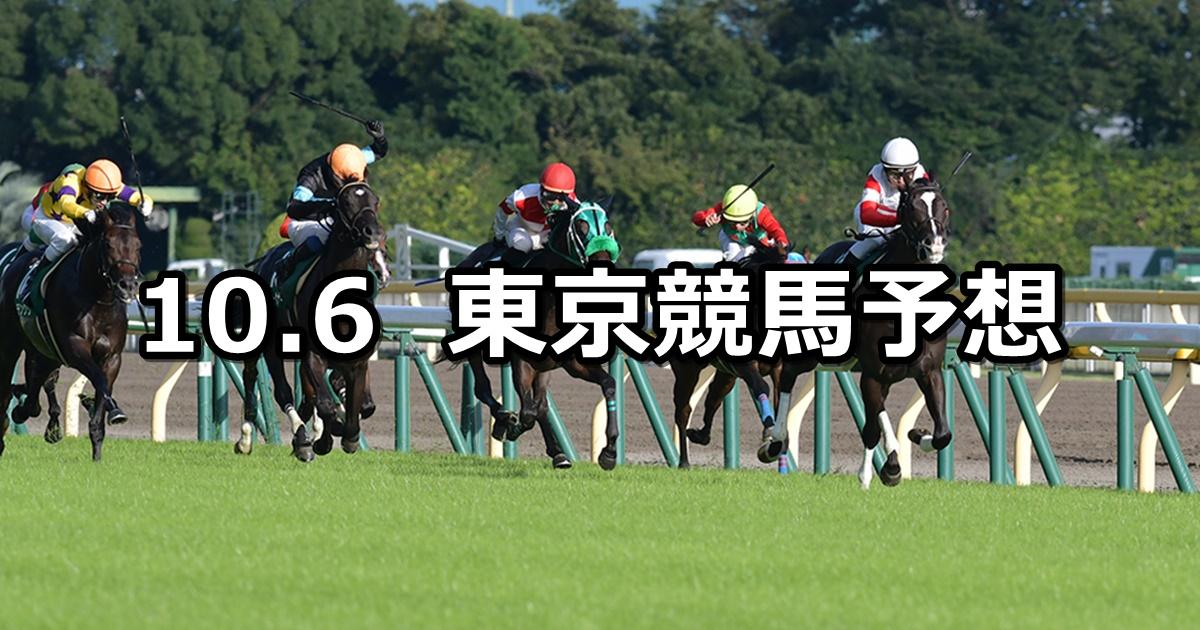 【サウジアラビアRC】10/6(土) 東京競馬 穴馬予想