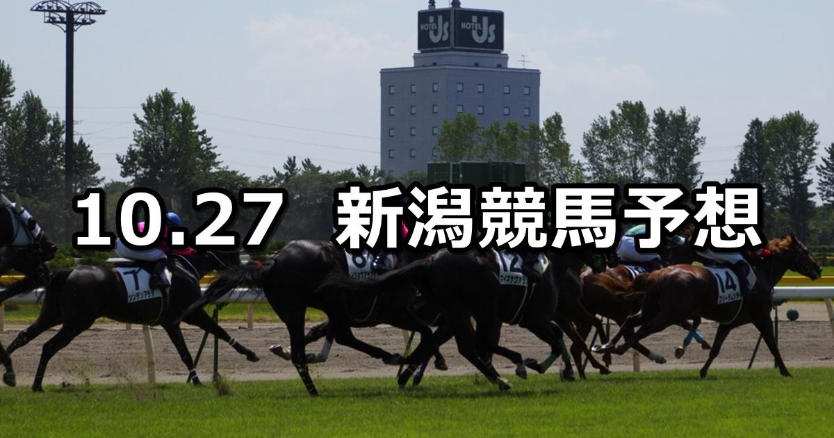 【魚沼特別】10/27(土) 新潟競馬 穴馬予想