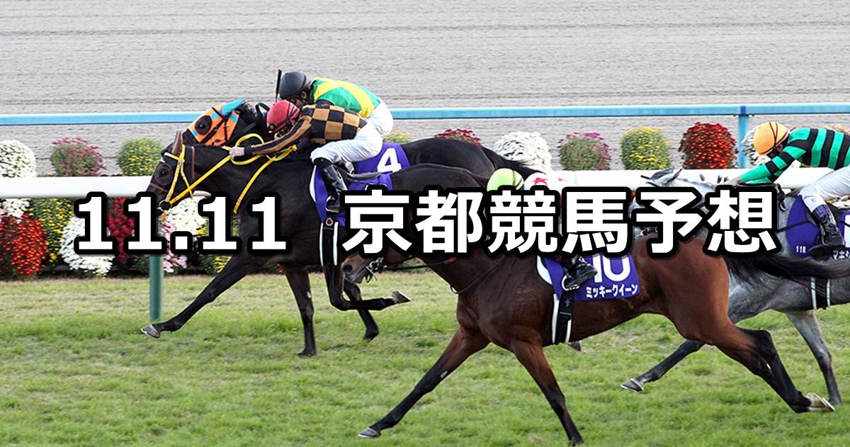 【エリザベス女王杯】11/11(日) 京都競馬 穴馬予想
