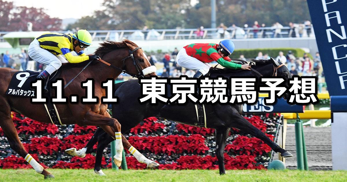 【オーロカップ】11/11(日) 東京競馬 穴馬予想