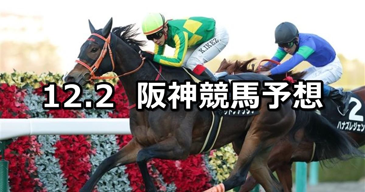 【逆瀬川ステークス】12/2(日) 阪神競馬 穴馬予想