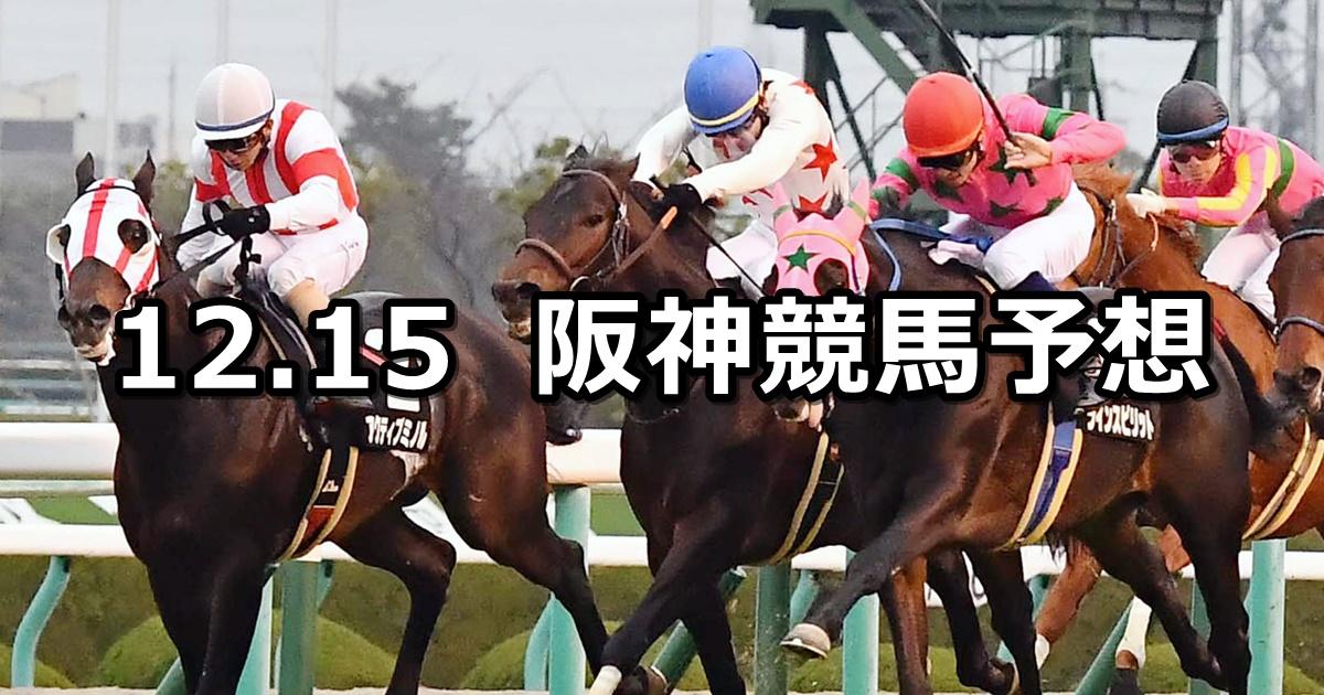 【タンザナイトステークス】12/15(土) 阪神競馬 穴馬予想