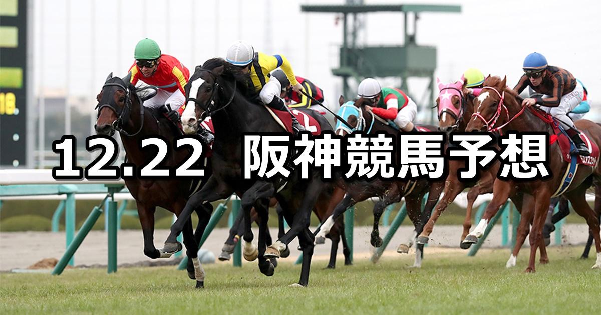 【阪神カップ】12/22(土) 阪神競馬 穴馬予想
