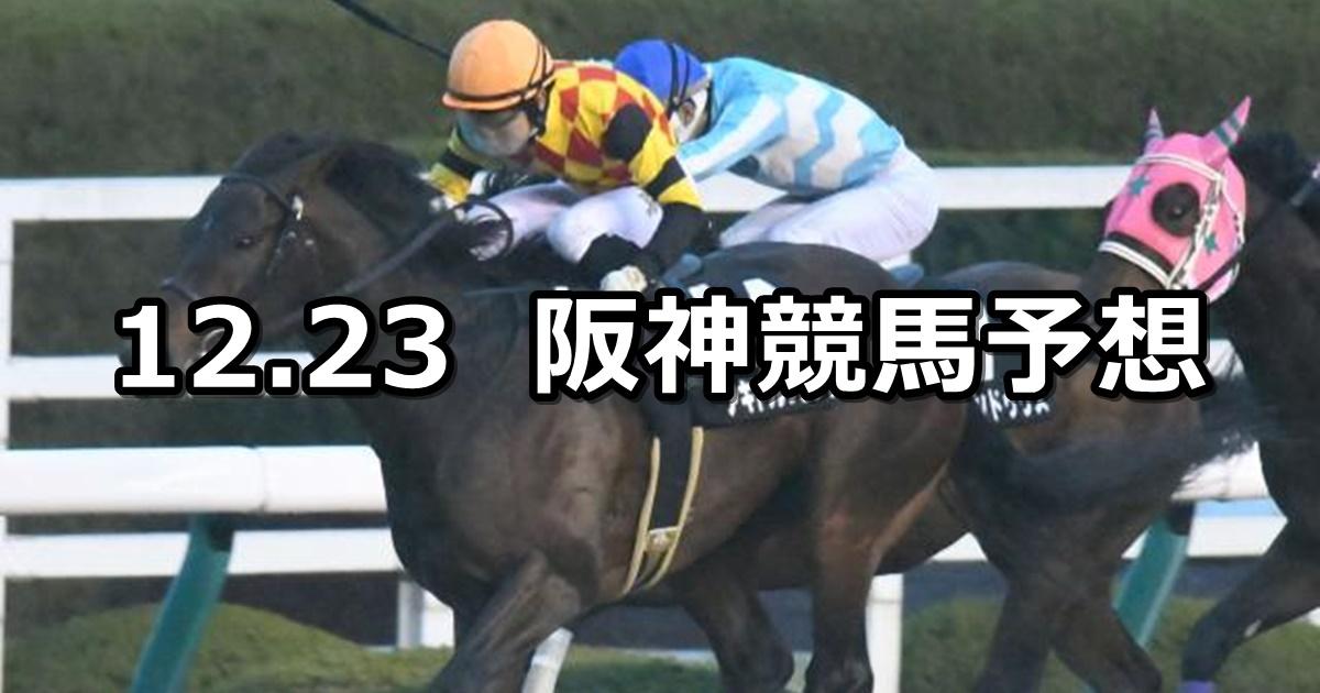 【ギャラクシーステークス】12/23(日) 阪神競馬 穴馬予想