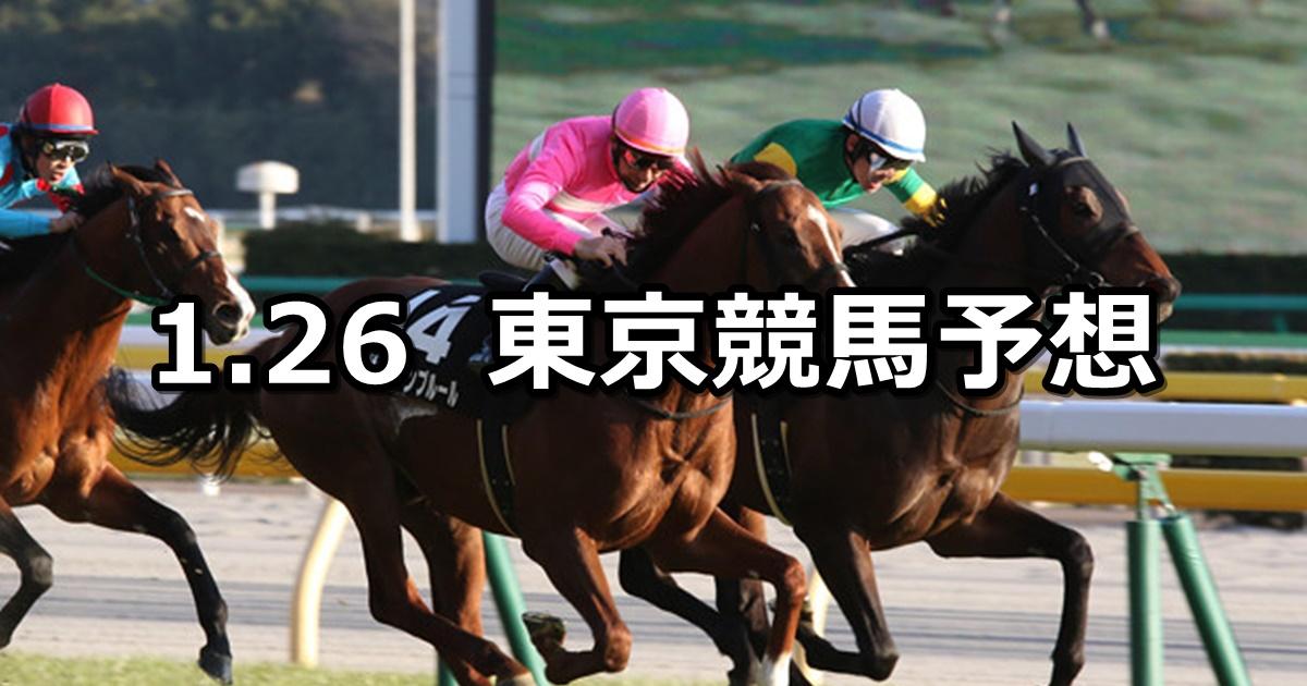【白富士ステークス】2019/1/26(土) 東京競馬 穴馬予想