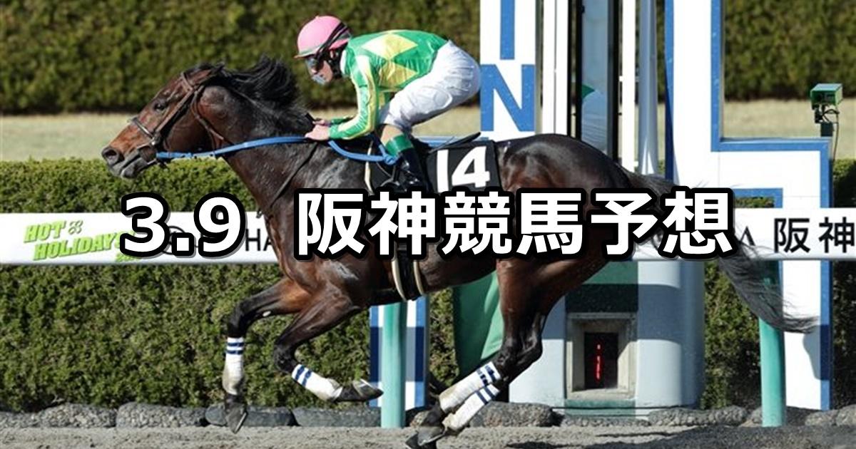 【ポラリスステークス】2019/3/9(土) 阪神競馬 穴馬予想