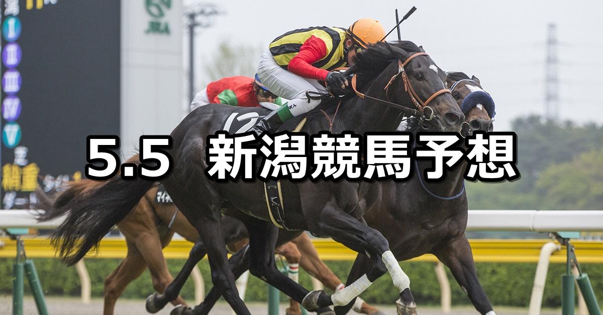 【谷川岳ステークス】2019/5/5(日) 新潟競馬 穴馬予想