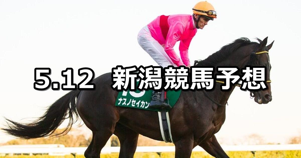 【赤倉特別】2019/5/12(日) 新潟競馬 穴馬予想