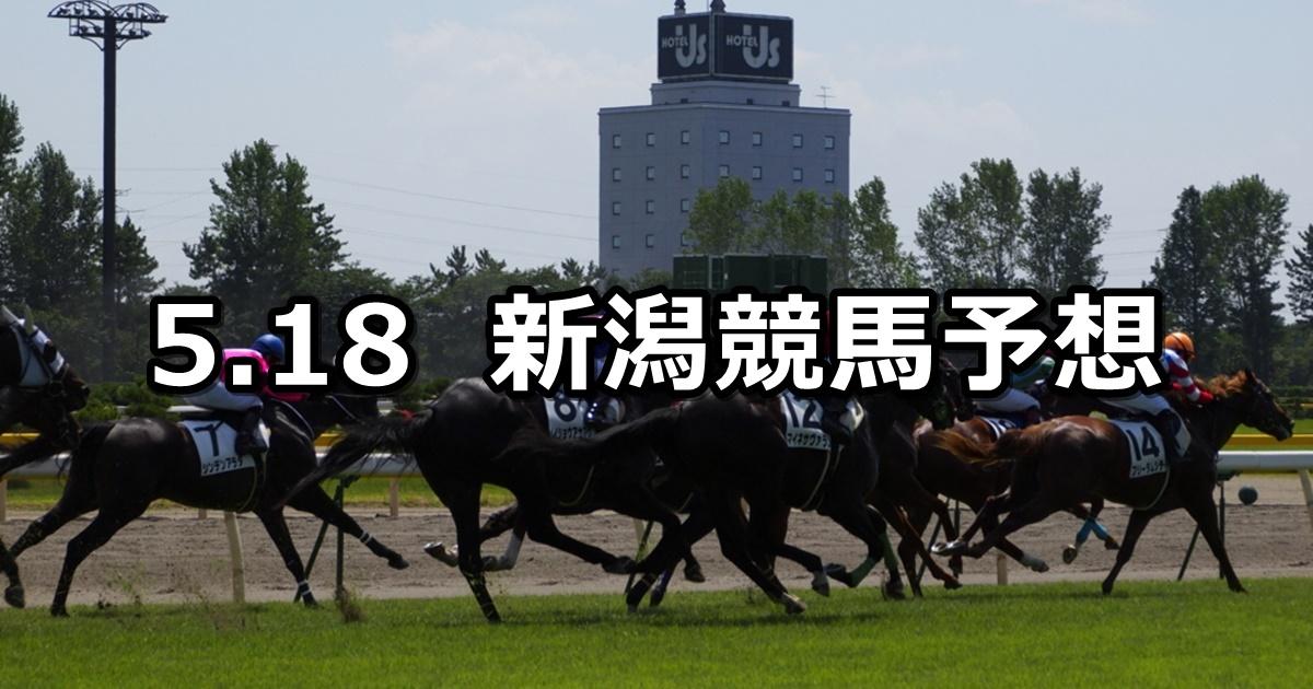 【大日岳特別】2019/5/18(土) 新潟競馬 穴馬予想