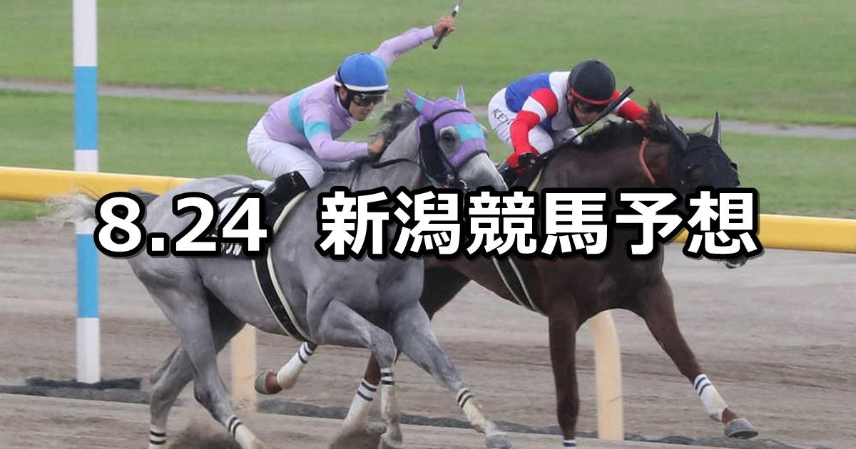【BSN賞】2019/8/24(土) 新潟競馬 穴馬予想