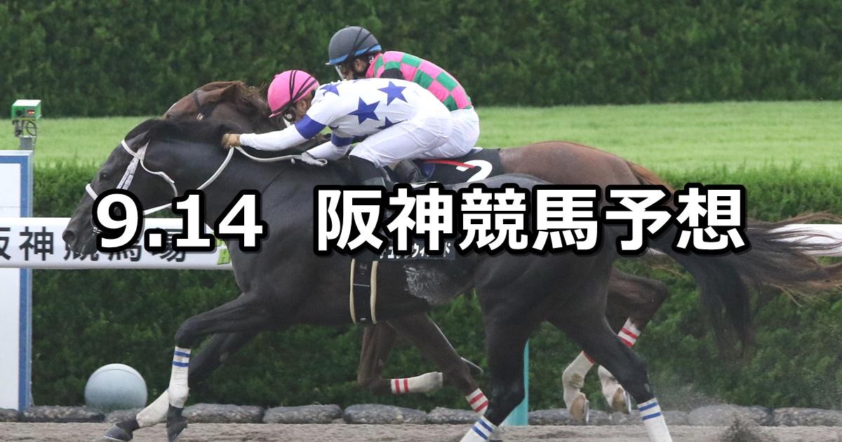 【オークランドRCT】2019/9/14(土) 阪神競馬 穴馬予想