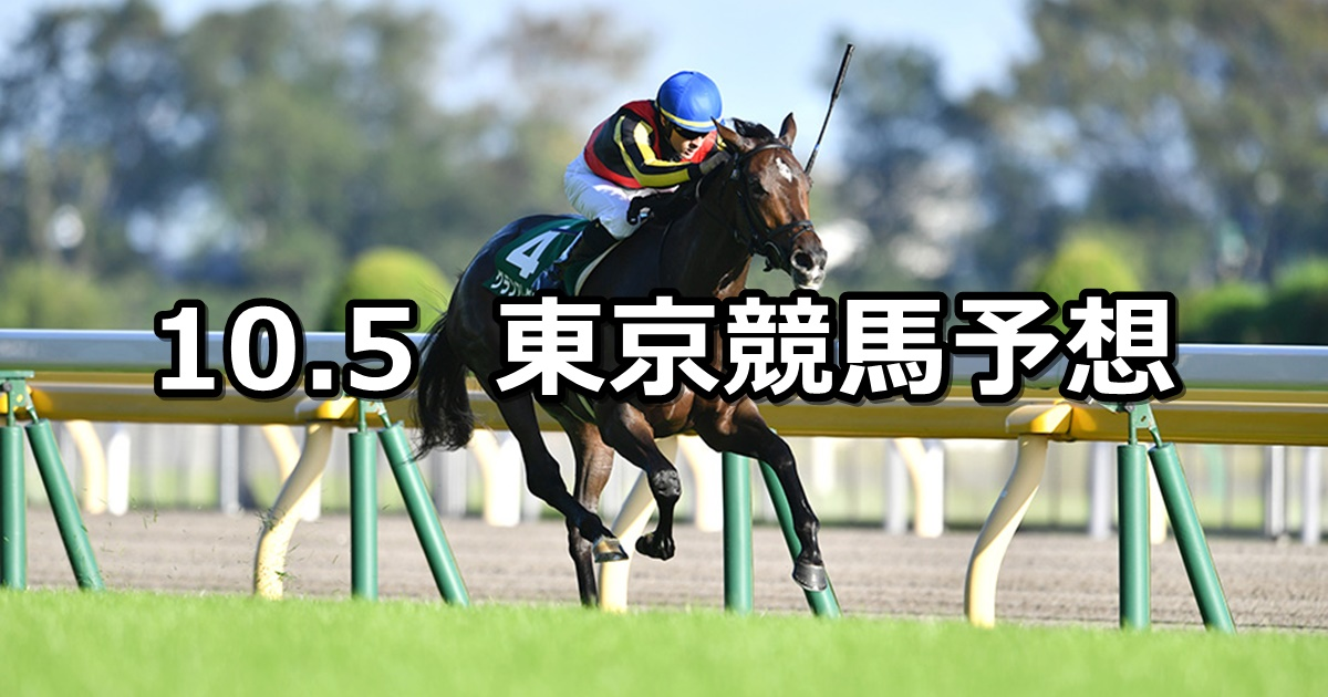 【サウジアラビアRC】2019/10/5(土) 東京競馬 穴馬予想