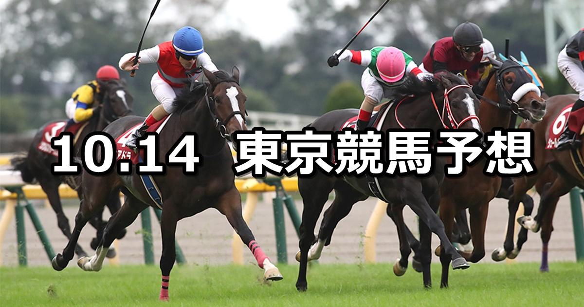 【府中牝馬ステークス】2019/10/14(月) 東京競馬 穴馬予想