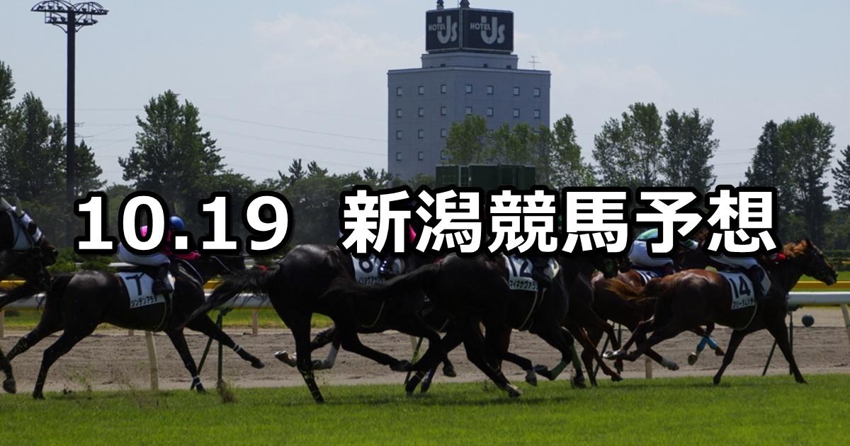 【妙高特別】2019/10/19(土) 新潟競馬 穴馬予想
