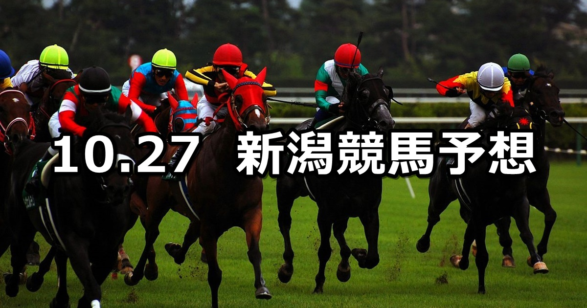 【ルミエールAD】2019/10/27(日) 新潟競馬 穴馬予想
