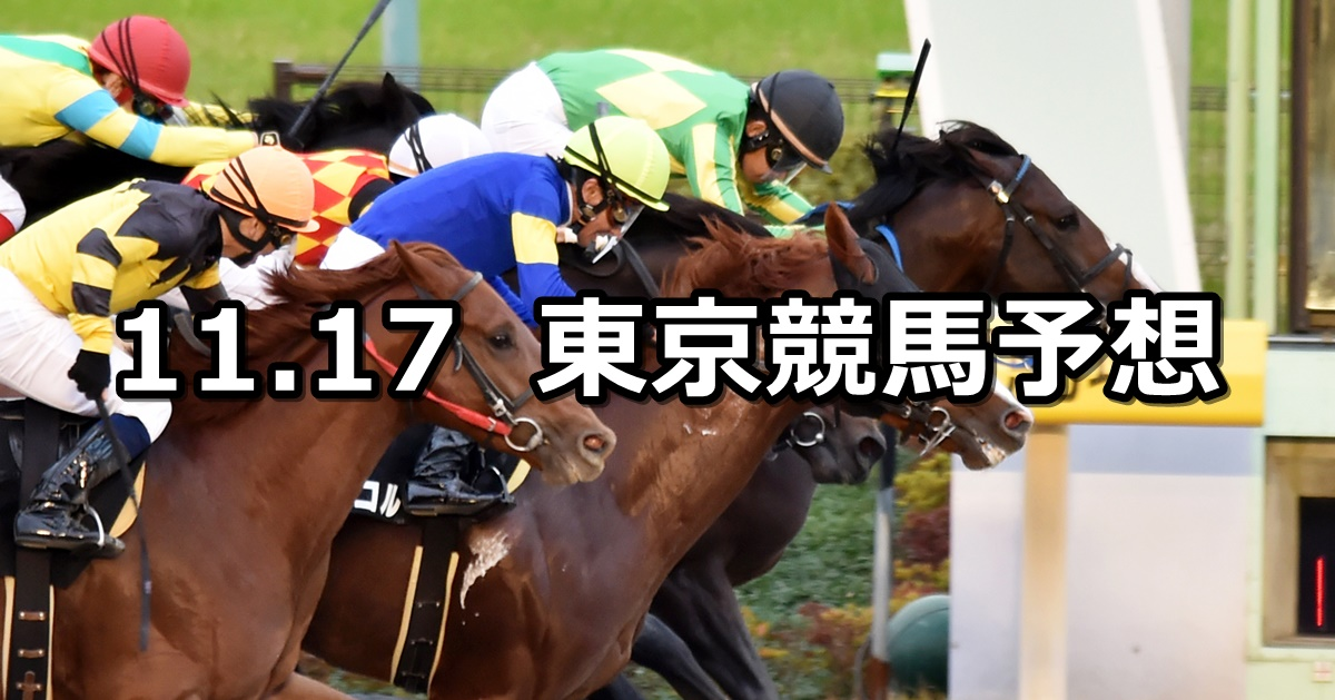 【霜月ステークス】2019/11/17(日) 東京競馬 穴馬予想