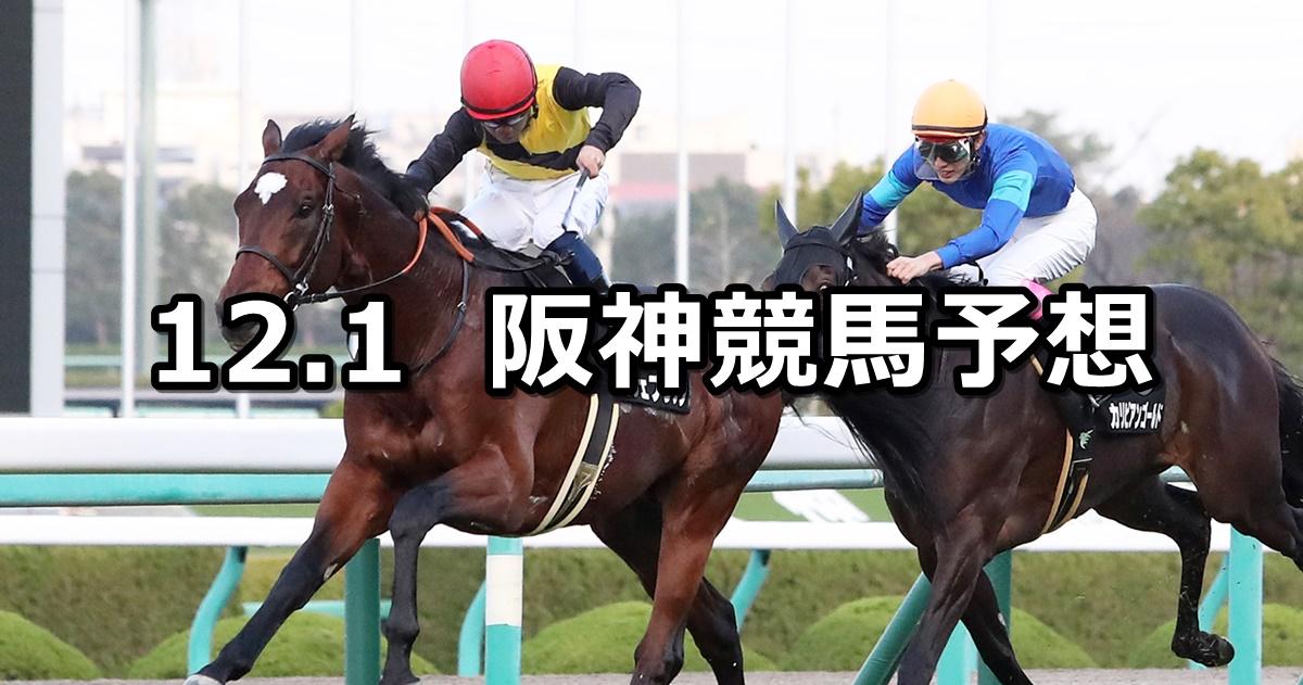 【逆瀬川ステークス】2019/12/1(日) 阪神競馬 穴馬予想