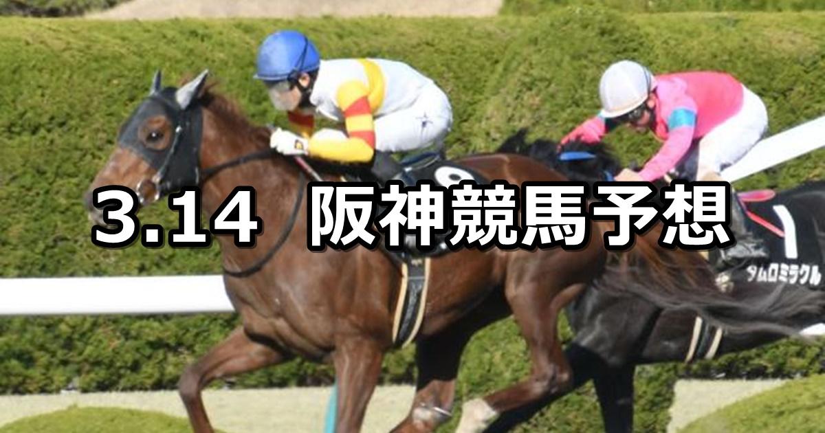 【ポラリスステークス】2020/3/14(土) 阪神競馬 穴馬予想