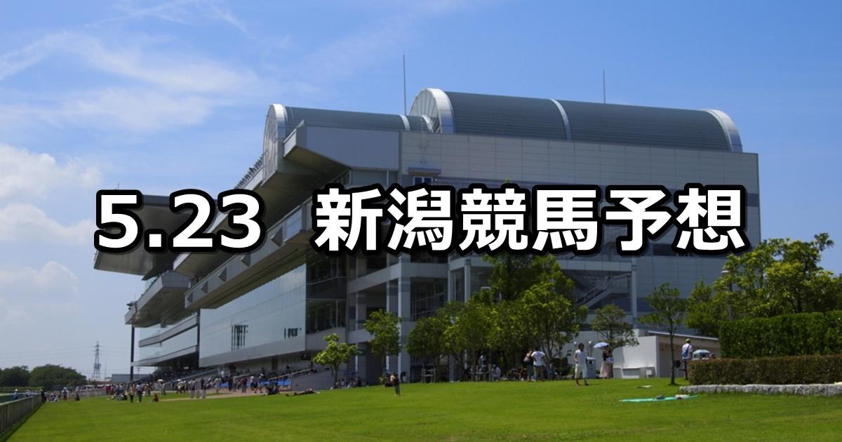 【大日岳特別】2020/5/23(土) 新潟競馬 穴馬予想