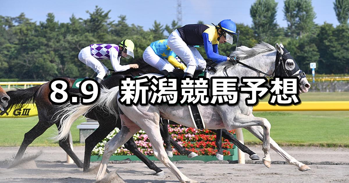 【レパードステークス】2020/8/9(日) 新潟競馬 穴馬予想