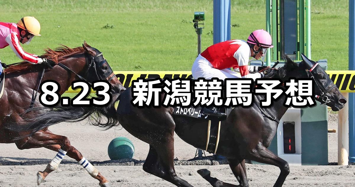 【NST賞】2020/8/23(日) 新潟競馬 穴馬予想