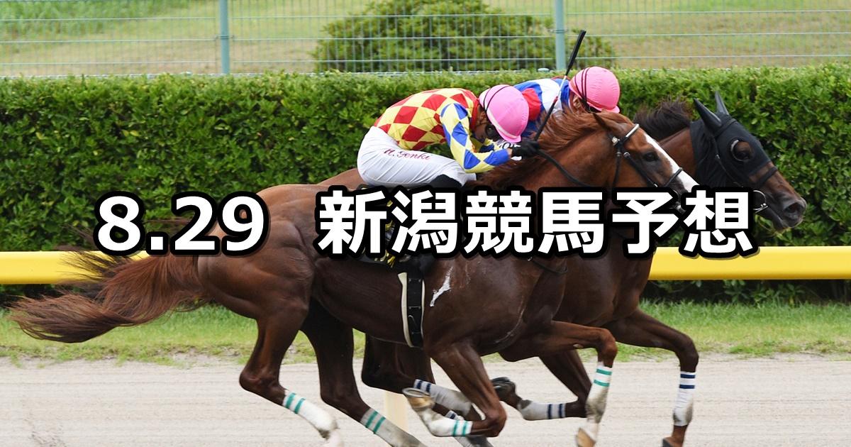 【BSN賞】2020/8/29(土) 新潟競馬 穴馬予想