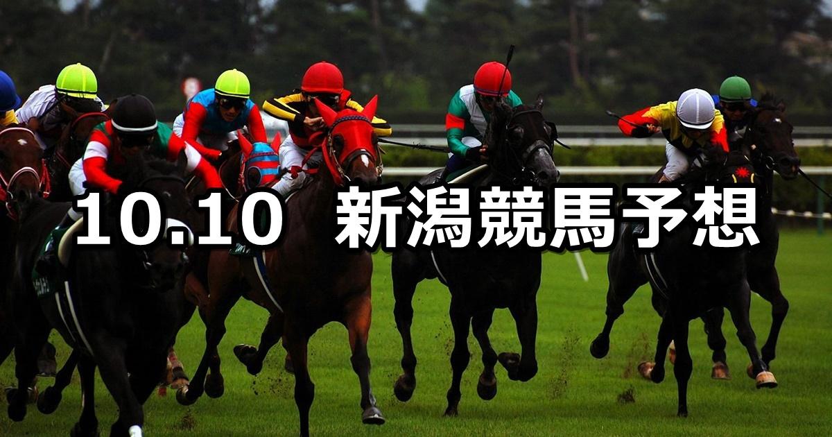 【魚沼特別】2020/10/10(土) 中央競馬予想(新潟競馬)