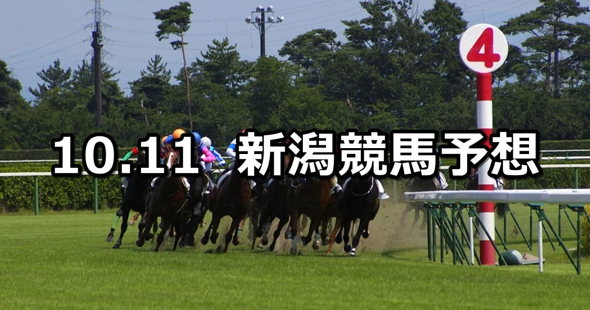 【北陸ステークス】2020/10/11(日) 中央競馬予想(新潟競馬)