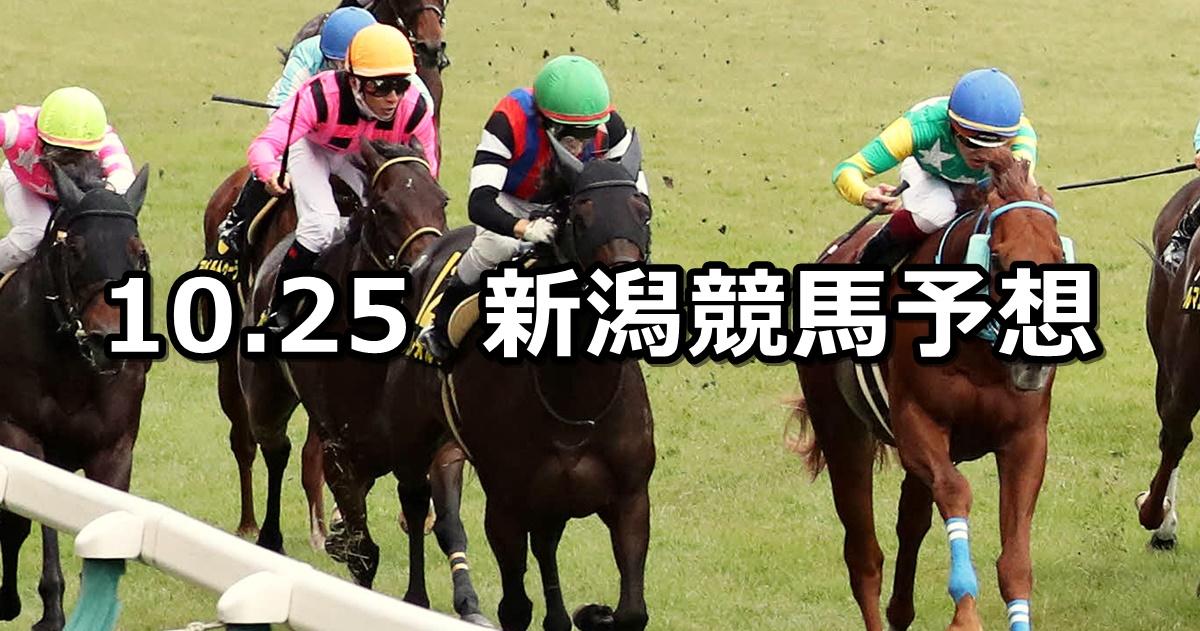【ルミエールAD】2020/10/25(日) 中央競馬予想(新潟競馬)