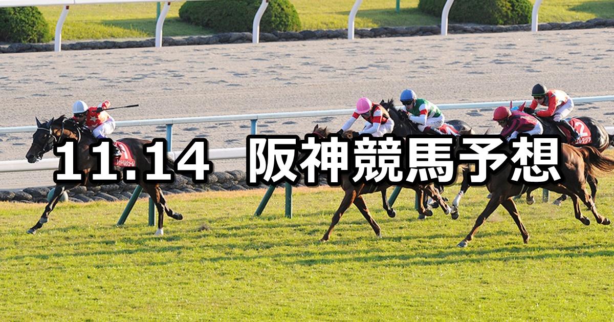 【デイリー杯2歳ステークス】2020/11/14(土) 中央競馬予想(阪神競馬)