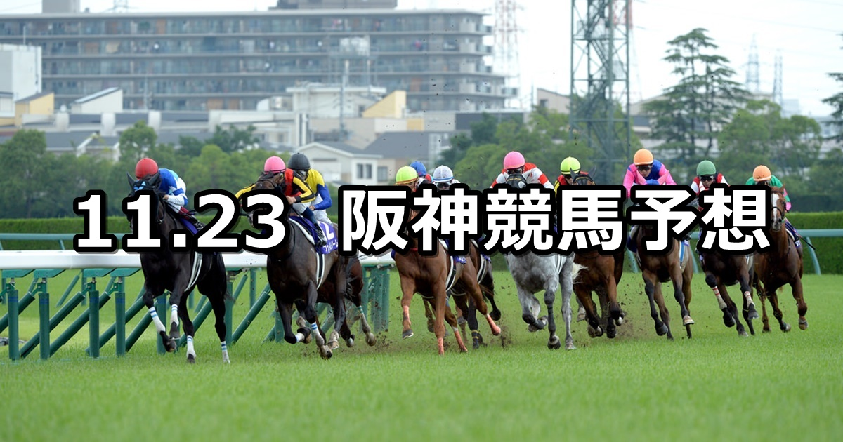 【姫路ステークス】2020/11/23(月) 中央競馬予想(阪神競馬)