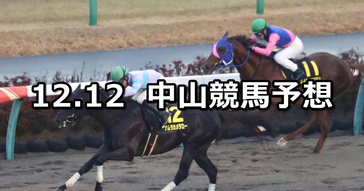 【師走ステークス】2020/12/12(土) 中央競馬 穴馬予想(中山競馬)