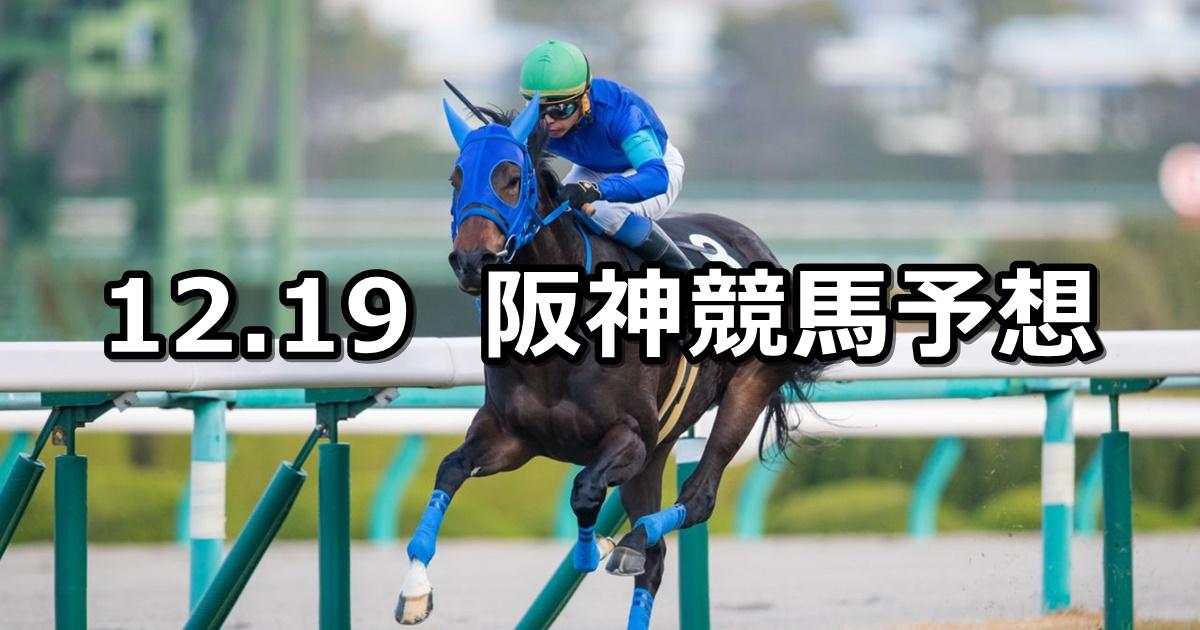 【タンザナイトステークス】2020/12/19(土) 中央競馬 穴馬予想(阪神競馬)