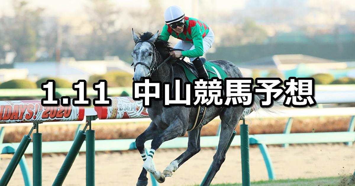 【フェアリーステークス】2021/1/11(月) 中央競馬予想(中山競馬)