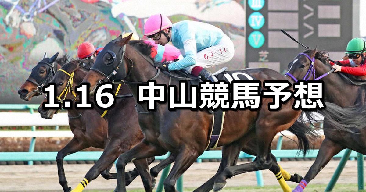 【カーバンクルステークス】2021/1/16(土) 中央競馬 穴馬予想(中山競馬)