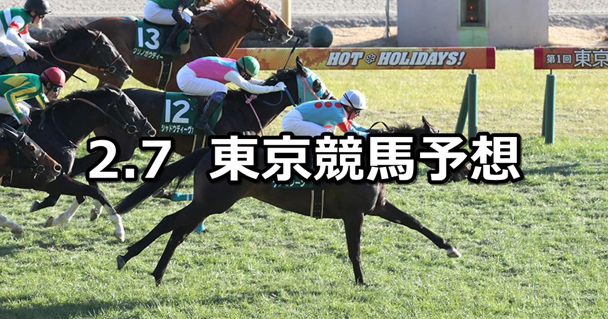 【東京新聞杯】2021/2/7(日) 中央競馬 穴馬予想(東京競馬)