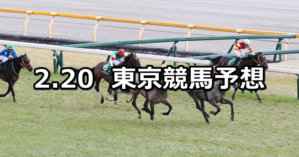 【ダイヤモンドステークス】2021/2/20(土) 中央競馬 穴馬予想(東京競馬)