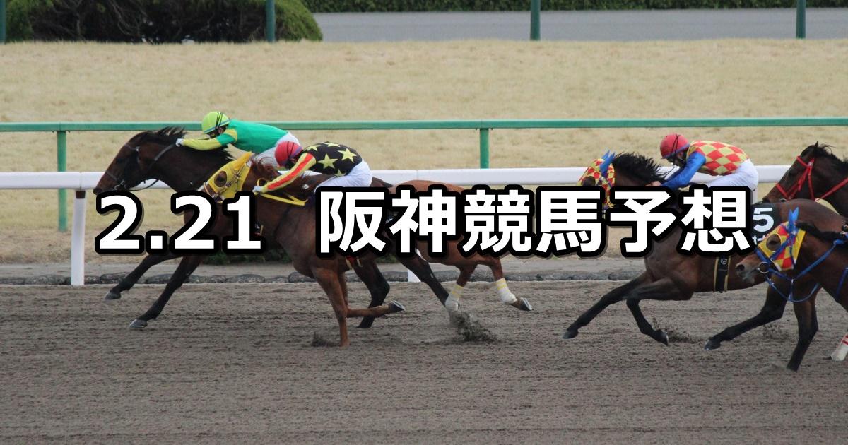 【大和ステークス】2021/2/21(日) 中央競馬 穴馬予想(阪神競馬)