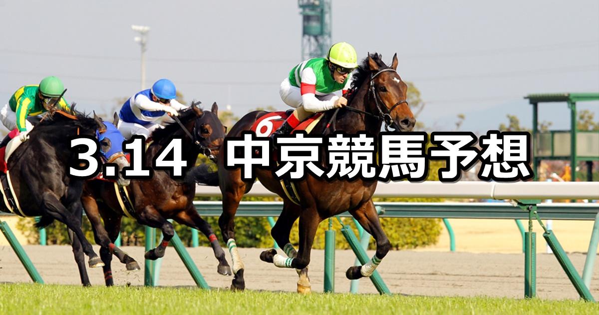 【金鯱賞】2021/3/14(日) 中央競馬 穴馬予想(中京競馬)