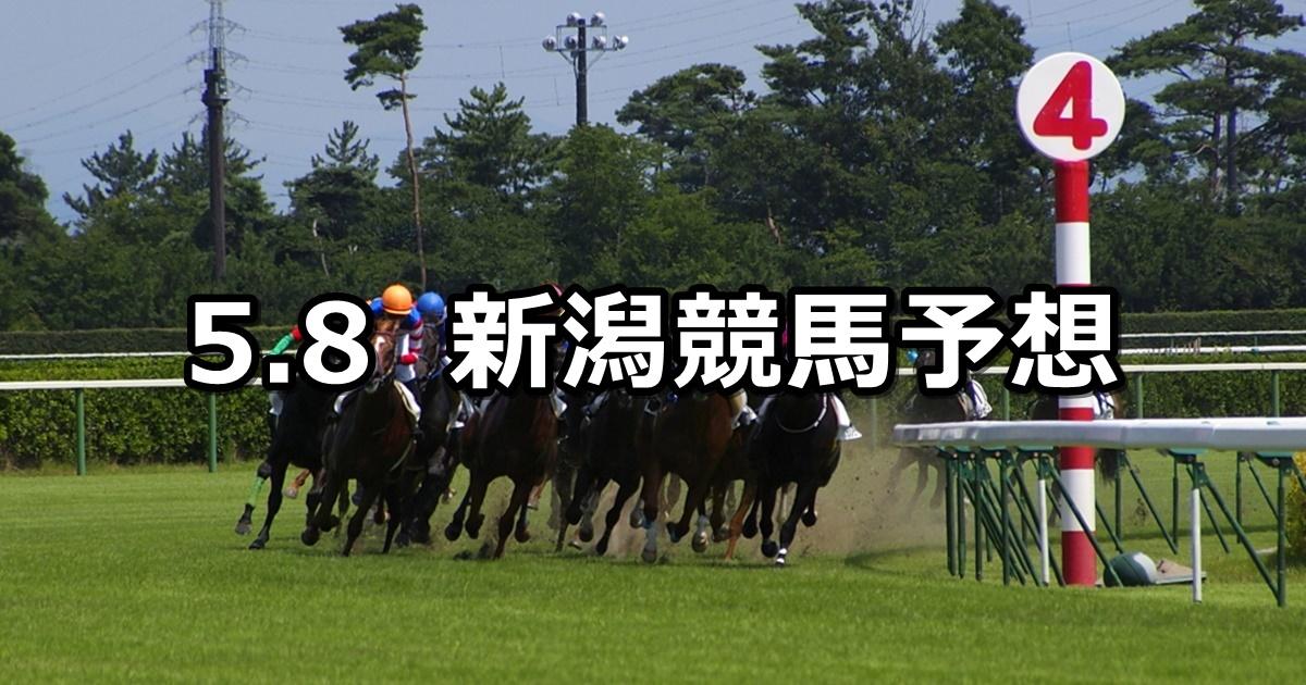 【谷川岳ステークス】2021/5/8(土) 中央競馬 穴馬予想(新潟競馬)